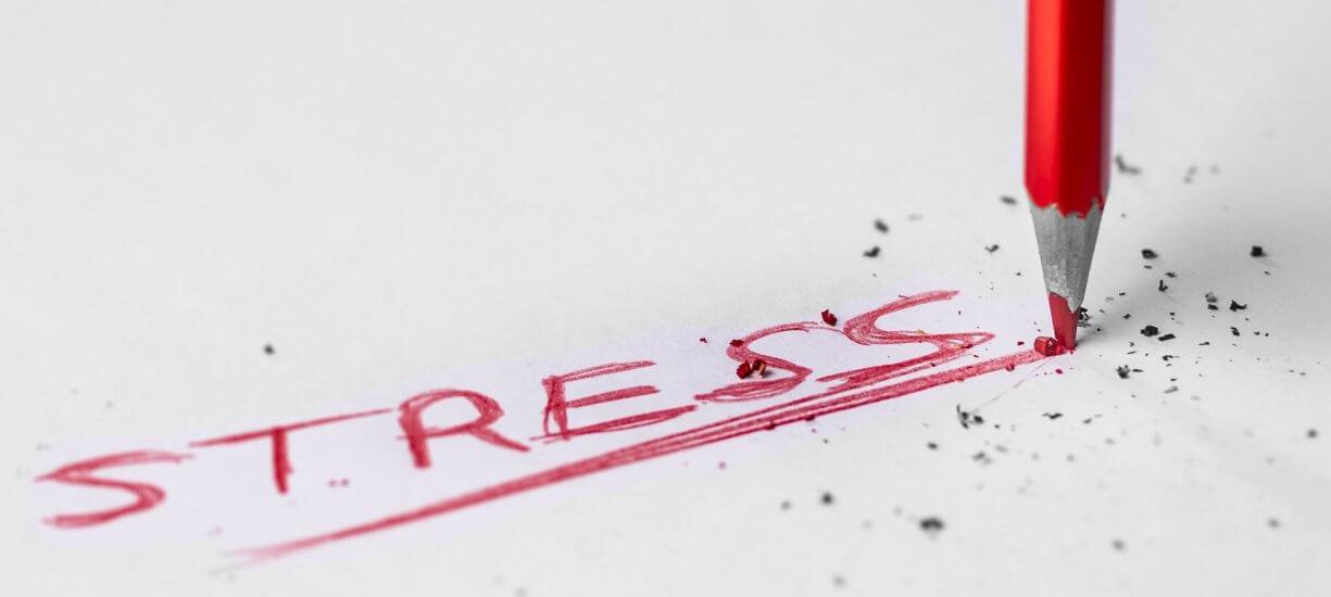 rischio da stress lavoro correlato gruppo minerva